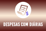 3-despesa diarias.png