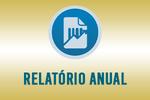 6-relatorio anual.png